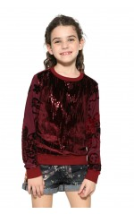 Desigual Sweat Swift Burdeos Rouge 17WGSK24